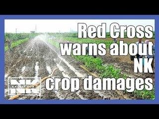 North Korea crops damaged: International Red Cross