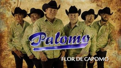 Palomo - Flor De Capomo