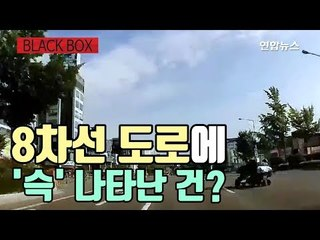 [블랙박스] 전동휠체어의 위험한 8차선 무단횡단 / 연합뉴스 (Yonhapnews)