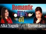 Mere Humsafar - Sonu Nigam & Alka Yagnik's Superhit Romantic