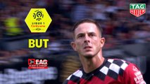 But Nolan ROUX (20ème) / EA Guingamp - Paris Saint-Germain - (1-3) - (EAG-PARIS) / 2018-19