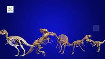 Finger Family Crazy Dinosaur Family Nursery Rhyme | Funny Dinosaur Finger Family 3D Cartoo