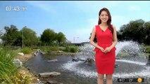 [날씨] 폭염 다시 심해져…서해안 곳곳 '열대야'
