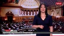 Rencontres sénatoriales de l'apprentissage - Les matins du Sénat (09/08/2018)