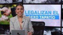 SEXO ÁREA PUBLICA #DDC_ Legalizan el sexo tapatío