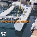 Ce drone marin peut détecter les baleines dans un rayon de 10 km