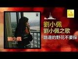 劉小佩 Liu Xiao Pei - 路邊的野花不要採 Lu Bian De Ye Hua Bu Yao Cai (Original Music Audio)