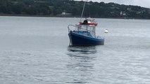 Un dauphin interdit la baignade à Port-Maria