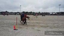 La Province - Sports équestres - La Belgique remporte le jeu des drapeaux aux championnats du monde par équipes de Pony Games à Ghlin