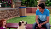 Dog With A Blog S03E07 Avery Makes Over Max