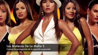 Asi sera la segunda temporada de Las Munecas De La Mafia