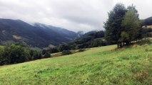 Affaire Jos Brech : le massif des Vosges , un terrain idéal pour se cacher