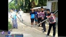 Il capture un énorme cobra royal à la main