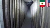 Drug tunnel found under old KFC restaurant in Arizona