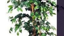 Top 10 Unique Home Decor [2018 ] Nearly Natural 5209 Ficus Silk Tree, 6-Feet, Green
