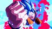 Dragon Ball FighterZ para Nintendo Switch - Características