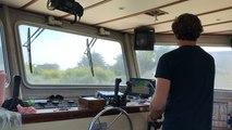 La pêche des moules de bouchot de la Baie du Mont-Saint-Michel