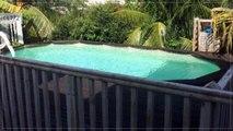 A louer - Maison/villa - LE LAMENTIN (97232) - 5 pièces - 216m²