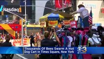 Thousands of bees swarm hot dog cart in Times Square, New York