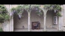 Luke Faulkner - Comptine d'un autre été: l'après-midi (Yann Tiersen)