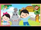 [놀이영어] 스토리송 2 (Daddy's taking us to the zoo)