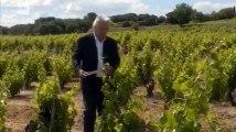 Le Sang de la vigne S5E1 FRENCH   Part 03