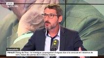 """Démission de Nicolas Hulot : """"Une des solutions serait peut-être de fusionner le ministère de l'Agriculture et de l'Environnement"""", propose le député LREM, Matthieu Orphelin"""