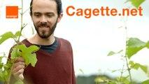 Cagette.net - Start-up Stories season 2