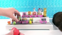 Paul vs Shannon Blind Bag Challenge Shopkins Season 10 Edition Toy Opening _ PSToyReviews
