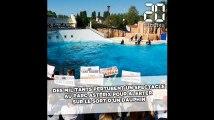 Des militants perturbent un spectacle au Parc Astérix pour «alerter» sur le sort d'un dauphin