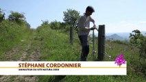 La restauration des coteaux de Gignat, Auvergne-Rhône-Alpes