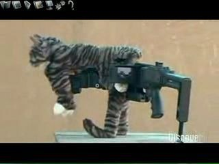 Future Weapons Kitty Cornershot
