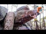 Triple Sick Send And Trad Climbing Action | Climbing Daily Ep.986