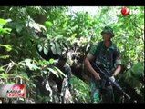 TNI Bakar 3 Hektar Ladang Ganja di Aceh