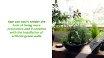 Best Ever Artificial Plant Walls in Sydney