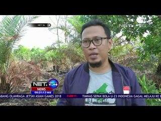 Walhi Kalimantan Tengah Menilai Presiden Jokowi Tak Perlu Mengajukan Kasasi - NET 24