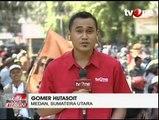 TNI Temukan Dua Hektare Ladang Ganja di Aceh