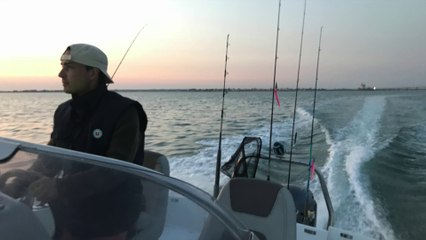Pêche d'un gros congre - Ile de Ré - Fishing trip August 2018 - Mackerels and conger