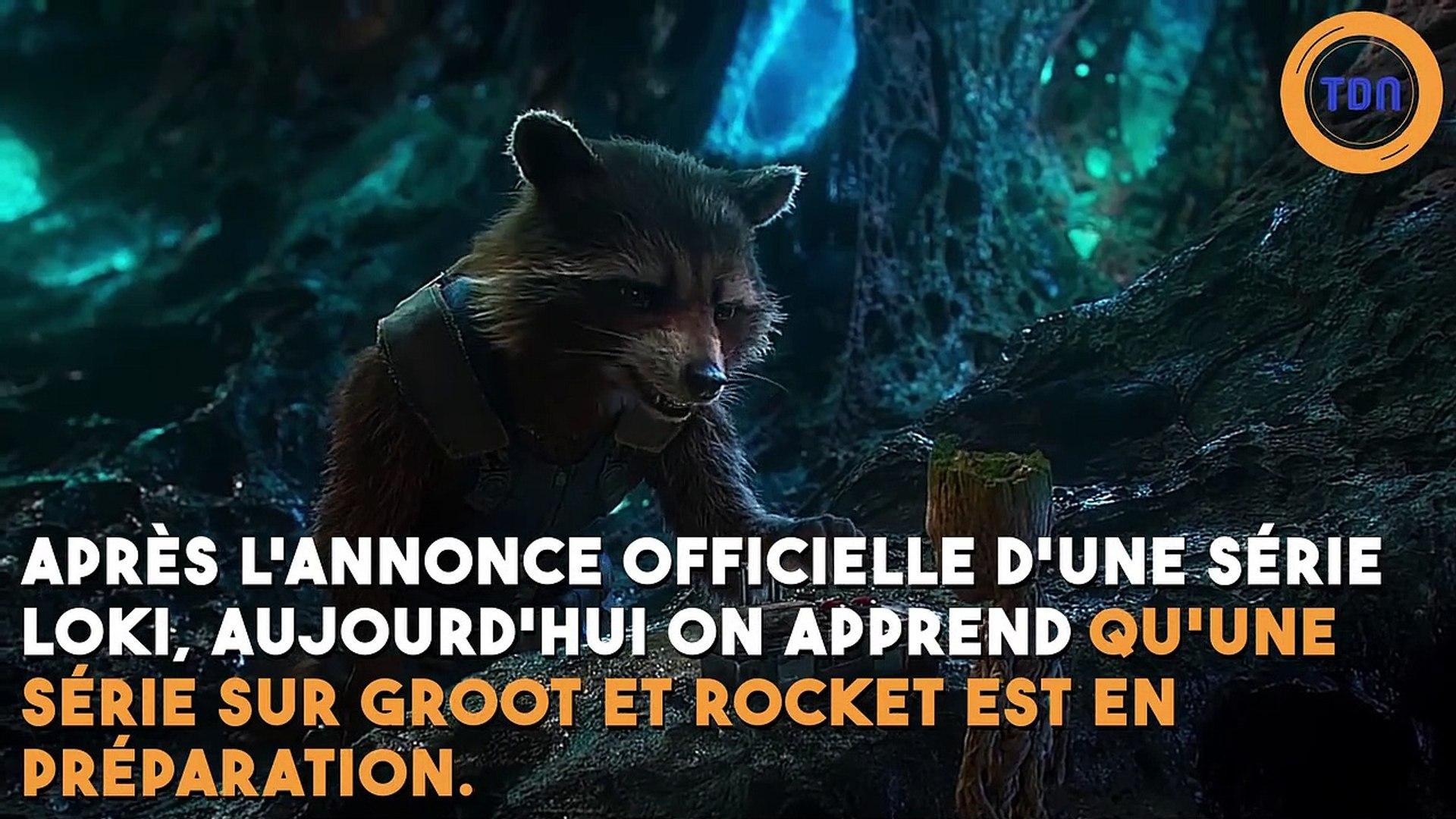 Disney + : Une série Rocket Raccoon et Groot en préparation ?