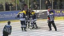 Sports : Hockey sur Glace, HGD vs Mulhouse - 21 Novembre 2018