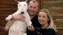 Robert Goetz, éleveur de bull-terriers à Rombas, en Moselle