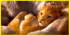 THE LION KING   Official Trailer - Disney Live Action Movie - Seth Rogan, Donald Glover, Beyoncé