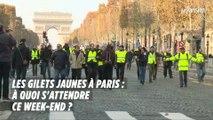 Les Gilets jaunes à Paris : à quoi s'attendre ce week-end ?