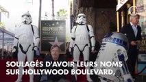 PHOTOS. Michael Bublé, Samuel L. Jackson, Ellen DeGeneres : les poses les plus WTF des stars pour inaugurer leurs étoiles à Hollywood