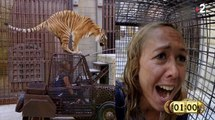 Enora Malagré en panique avec un tigre (Fort Boyard) - ZAPPING PEOPLE DU 10/09/2018
