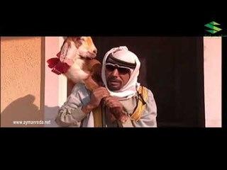 بقعة ضوء ـ مريت من يمهم وما حد فتحلي الباب ـ أيمن رضا