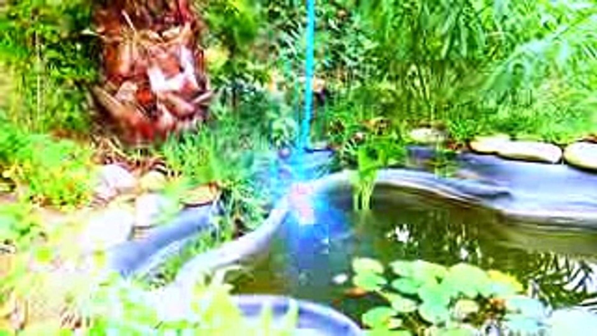 Настя и золотая рыбка  Nastya pretend play with magic gold fish