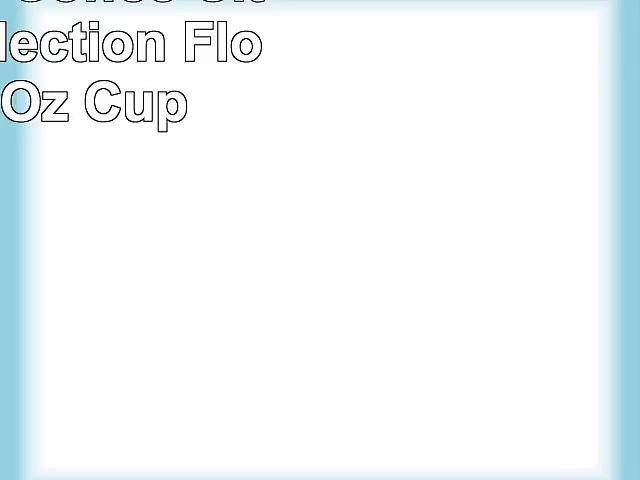 Starbucks Coffee City Mug Collection Florida 16 Oz Cup