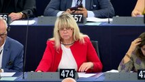 Eurocámara fija postura común sobre reforma de derechos de autor