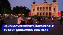 Hanoi Government Urges People to Stop Consuming Dog Meat